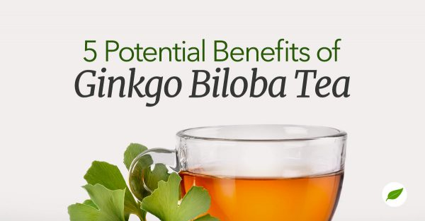 Gingko-Biloba-Tea
