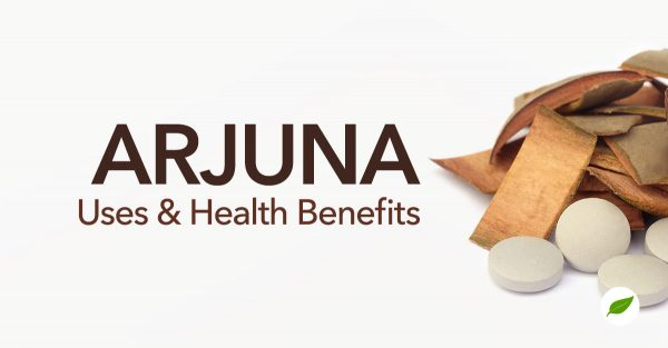 arjuna benefits