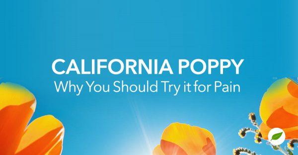 California poppy extract for pain