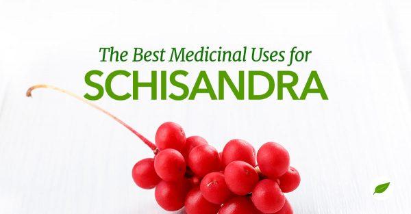 Schisandra-Uses