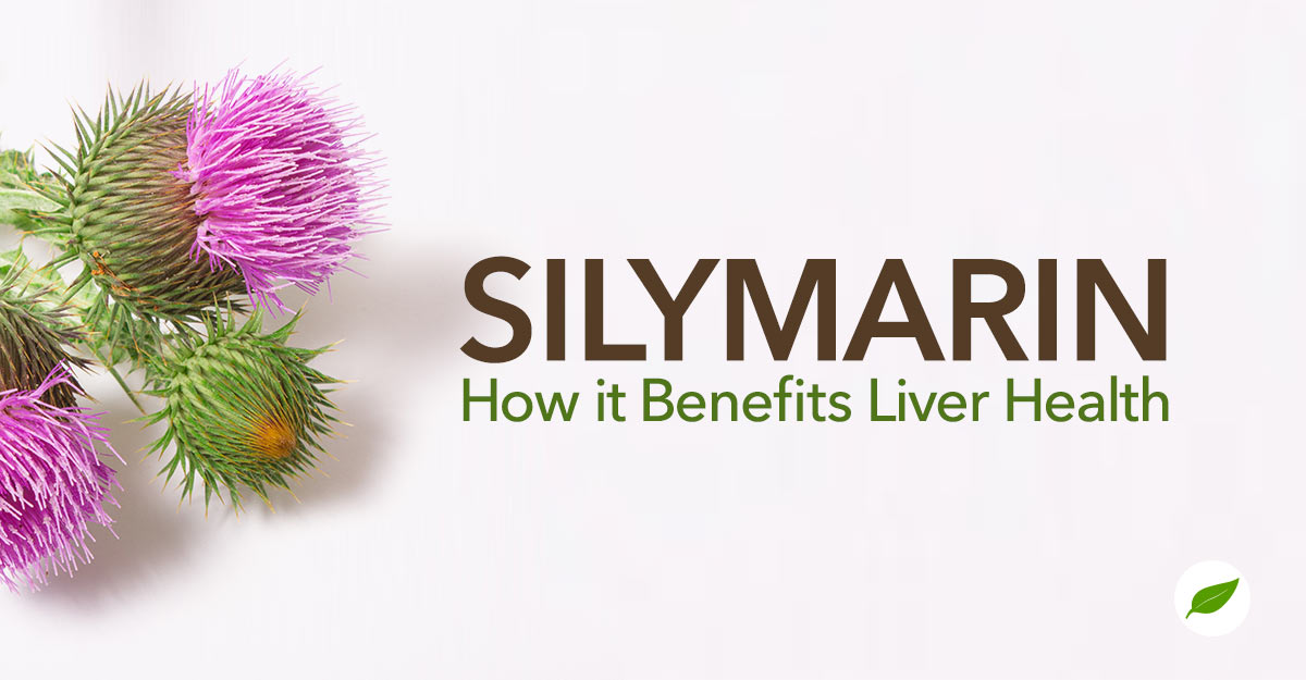 silymarin benefits