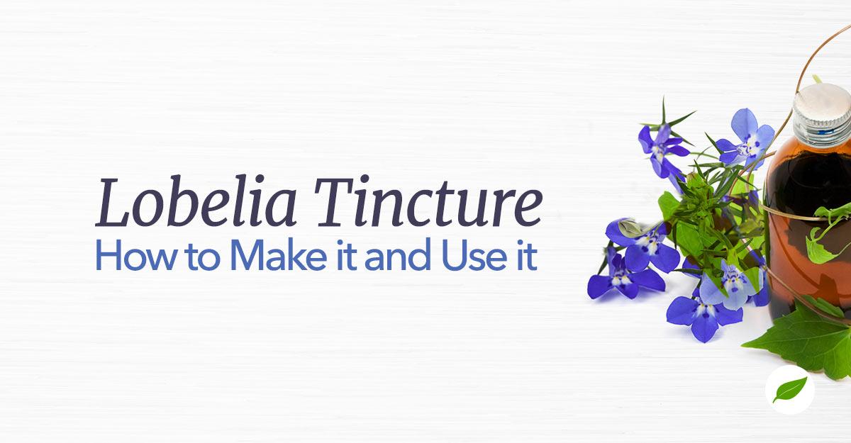 Lobelia-Tincture