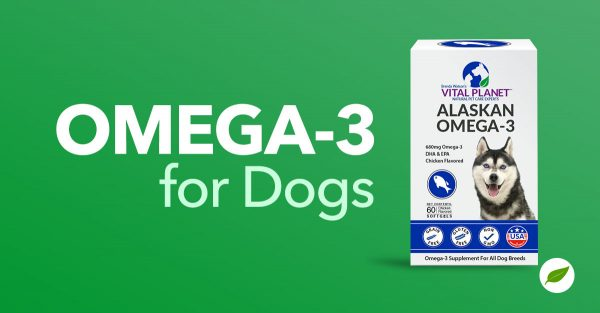 Omega-3-for-Dogs