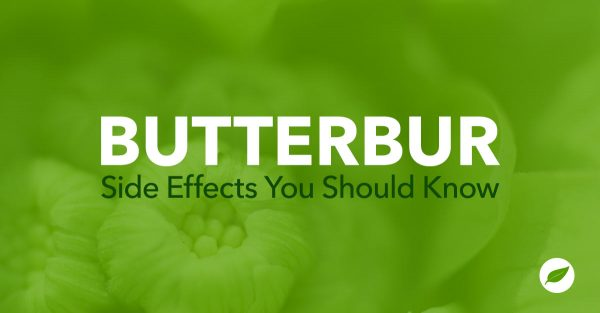 butterbur side effects