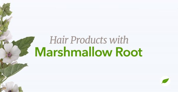 marshmallow-root-hair-products