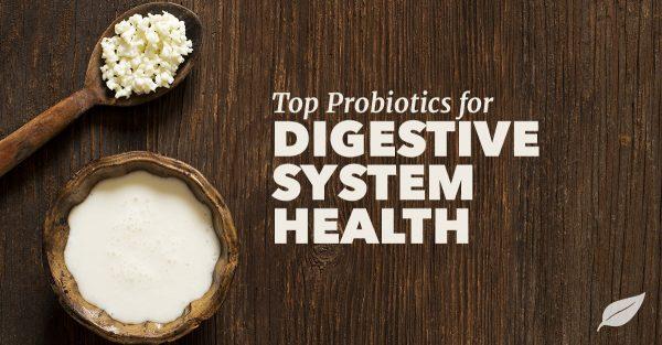 top probiotics