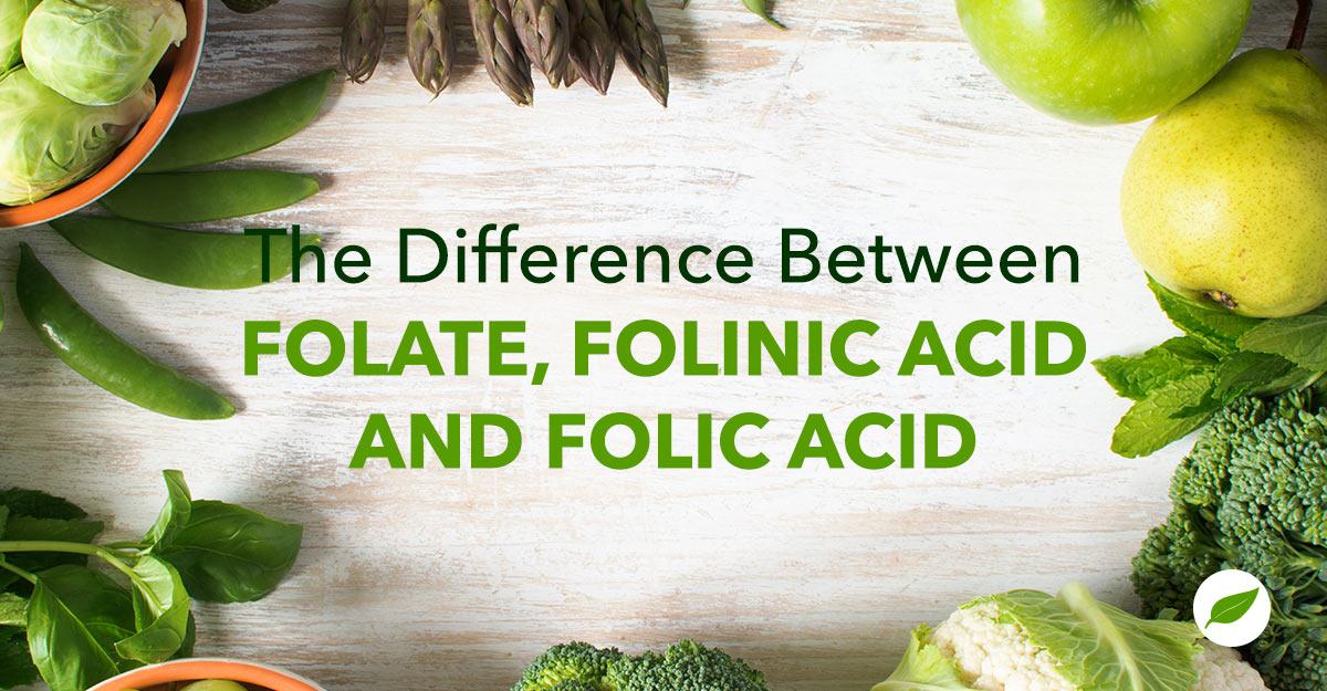 Folate - Feature Image