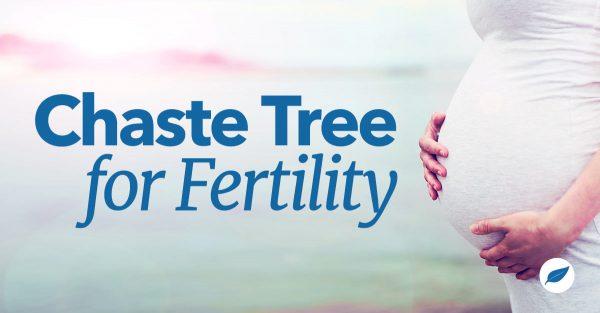 chaste tree for fertility