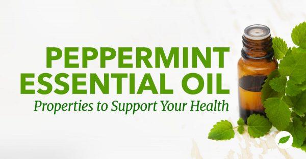 peppermint essential oil properties