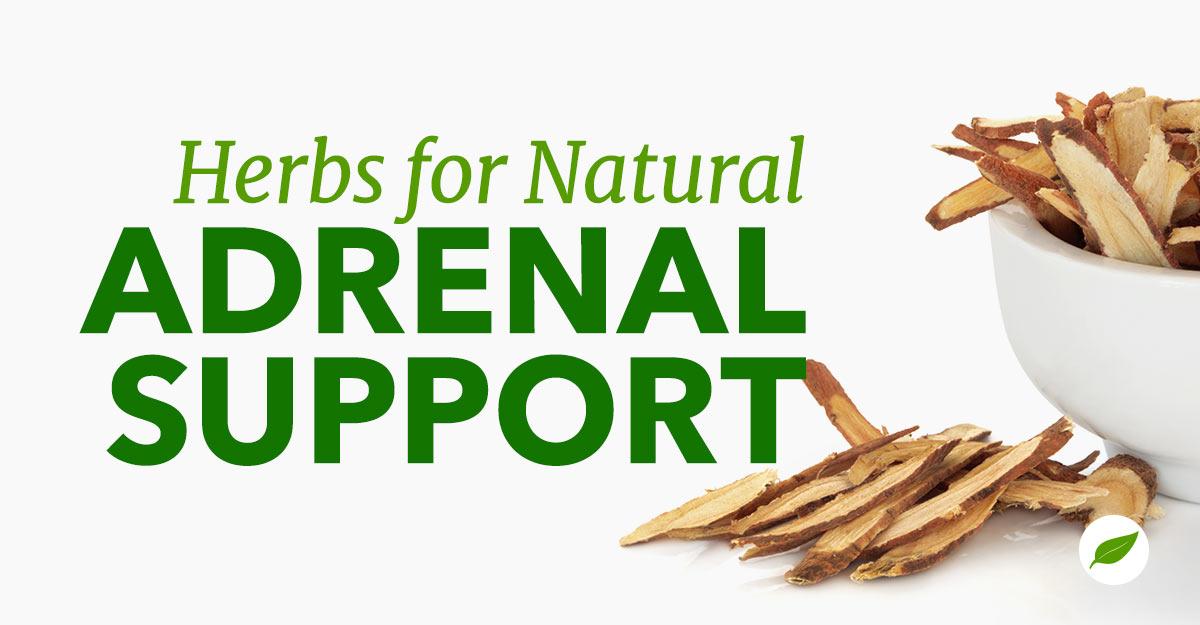 adrenal-support-herbs