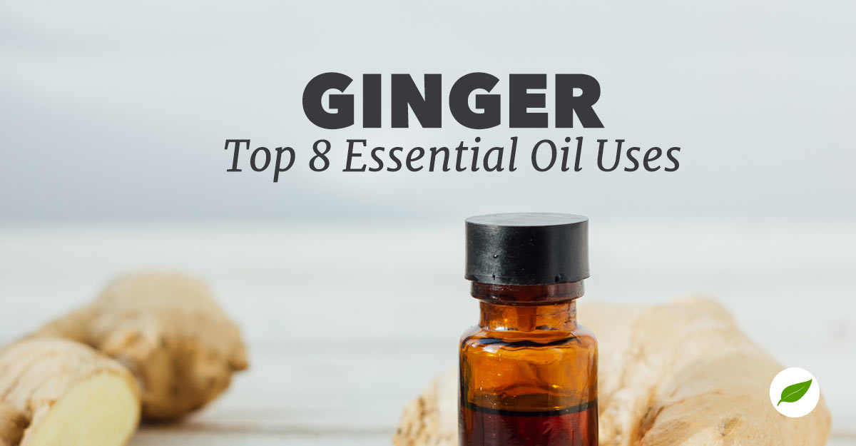 ginger essential oil uses