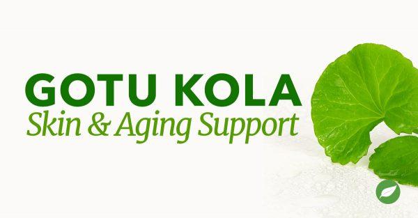 Gotu-Kola-for-Skin