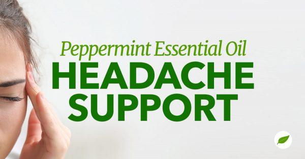 peppermint essential oil headache
