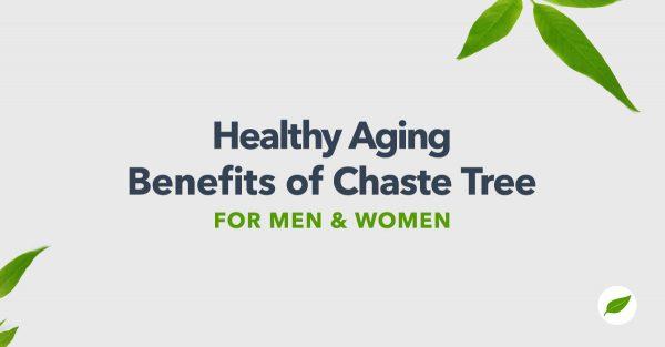chaste tree supplements