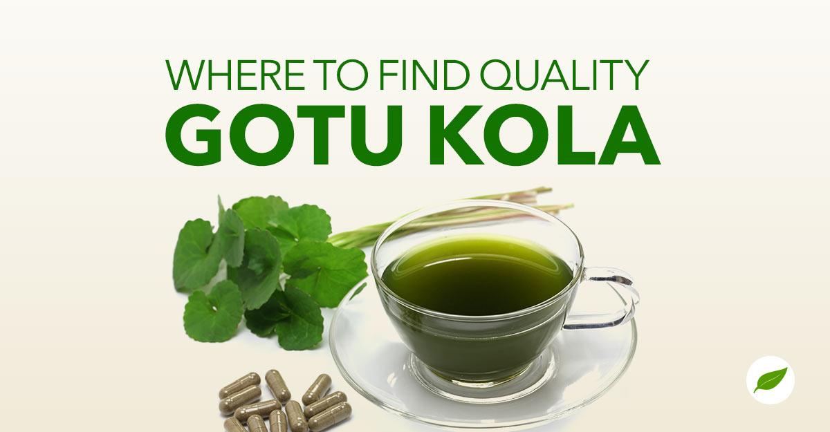 where-to-buy-gotu-kola