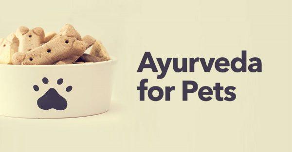 Ayurveda-for-pets