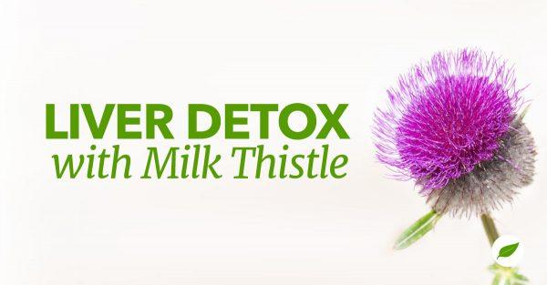 Milk-Thistle-Liver-Detox