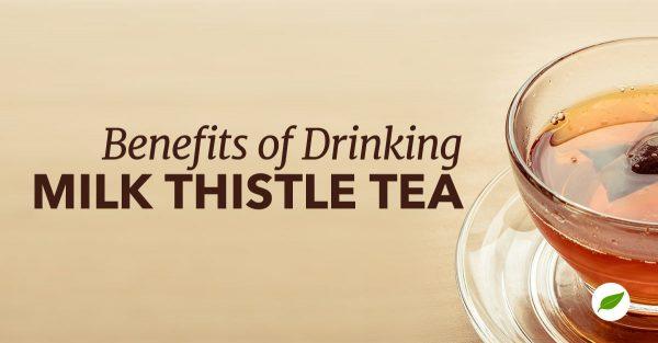 Milk-Thistle-Tea
