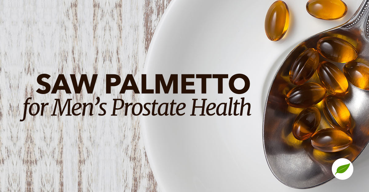 saw palmetto benefits