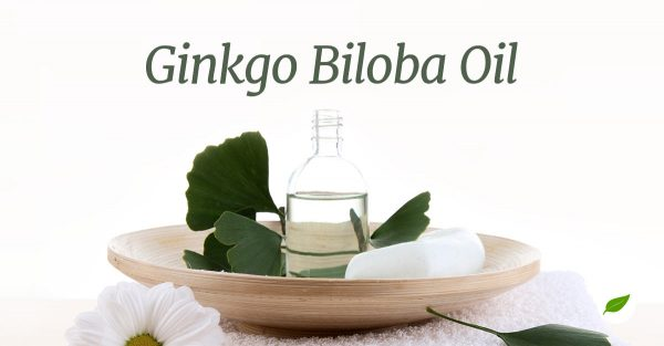 Gingko-Biloba-Oil