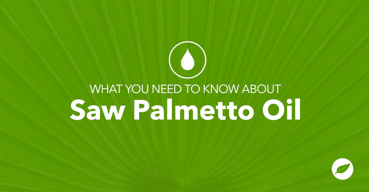 saw palmetto oil