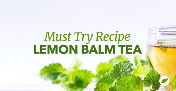 lemon-balm-tea-recipe