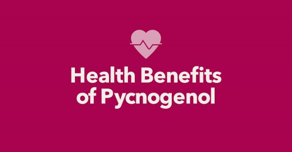 pycnogenol-health-benefits