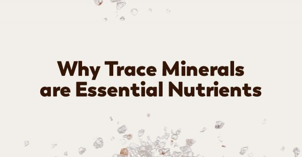 trace-minerals-health-support