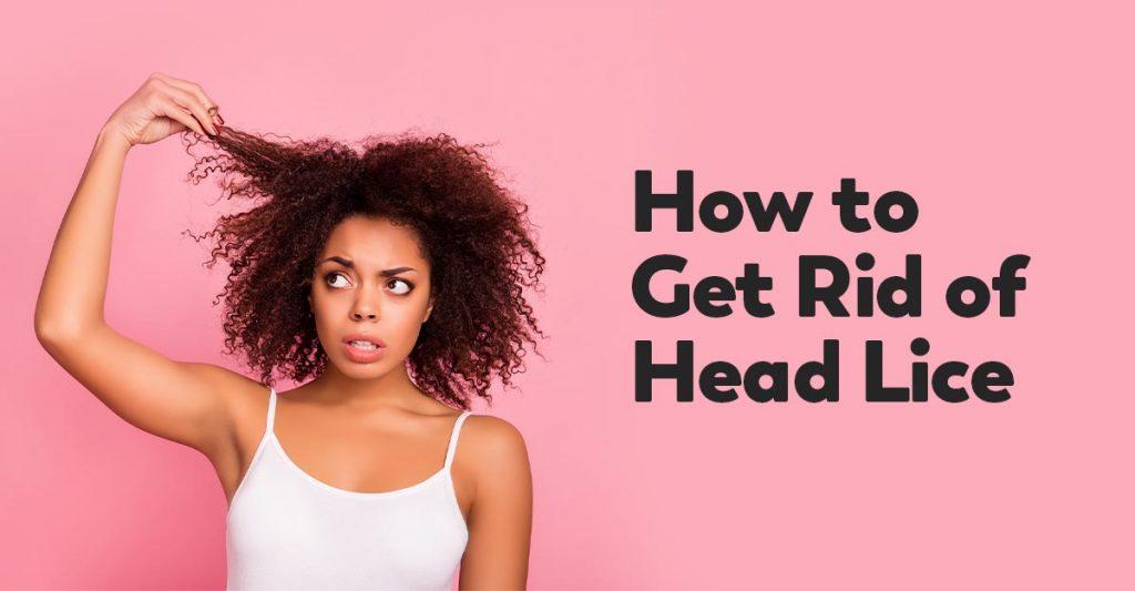 hairspray kill head lice