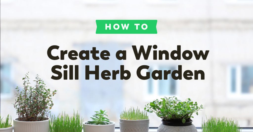 window-herb-garden