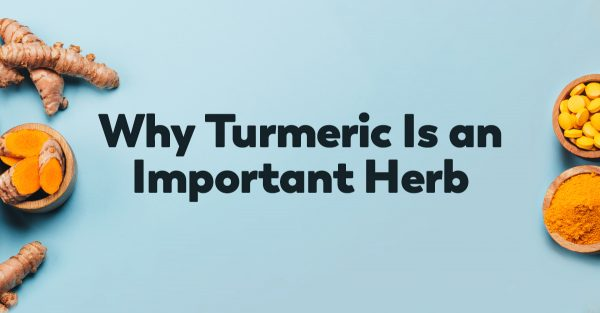 turmeric-important-herb