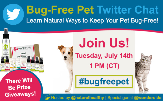 BugFreePet-Featured