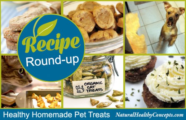 Recipe-Roundup-Pet-Treats