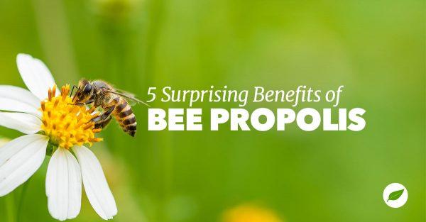 propolis benefits