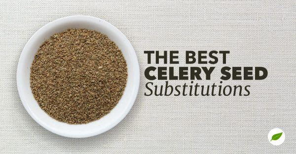 celery-seed-substitutes