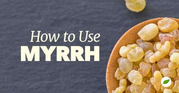 what-is-myrrh-uses