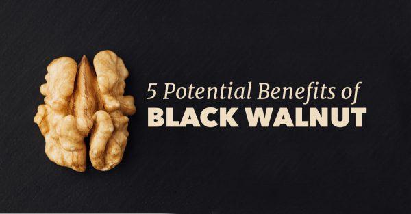 black-walnut-benefits