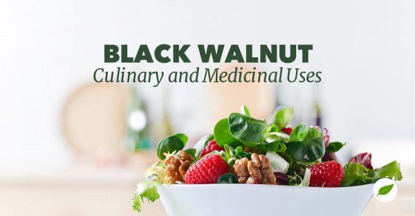 black-walnut-uses