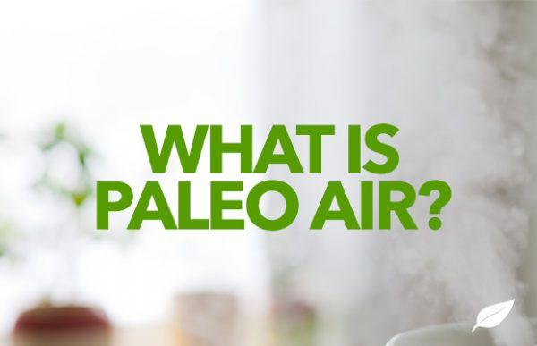 What-Paleo-Air-Respiratory-Diet