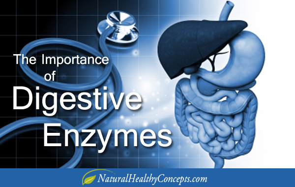 5 Reasons to Take Digestive Enzymes