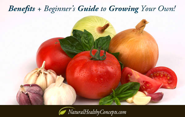 Benefits of Growing Your Own Food + Beginner's Guide!