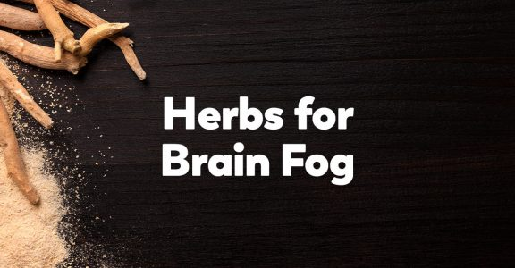 herbs-for-brain-fog
