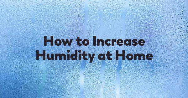 increase-humidity-at-home