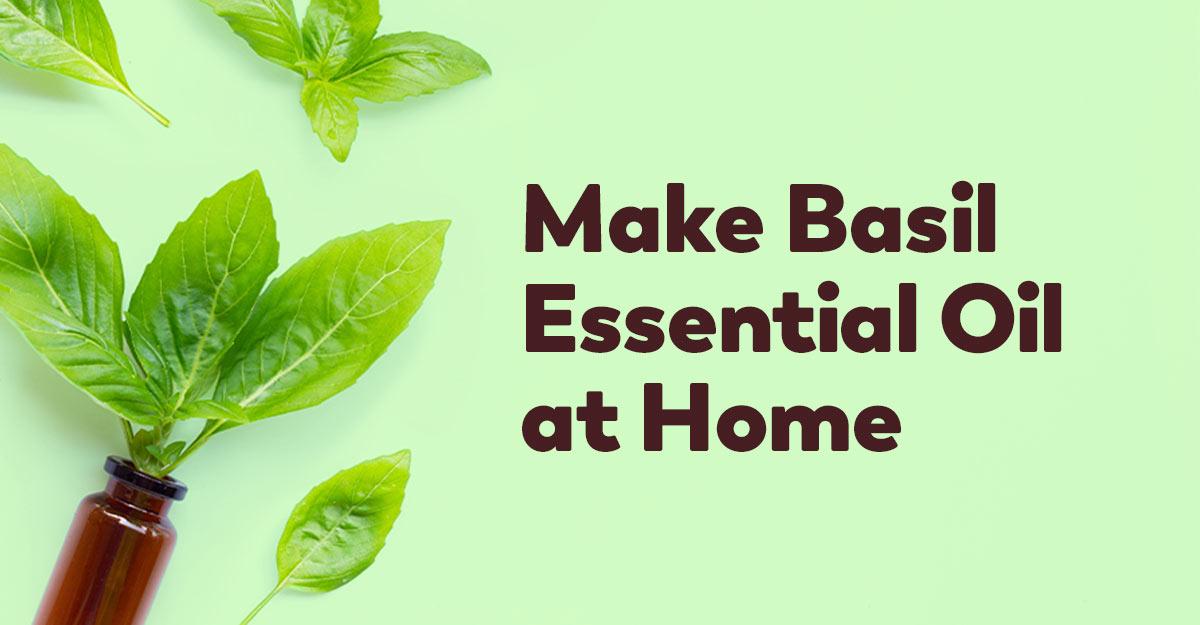 make-basil-essential-oil-at-home