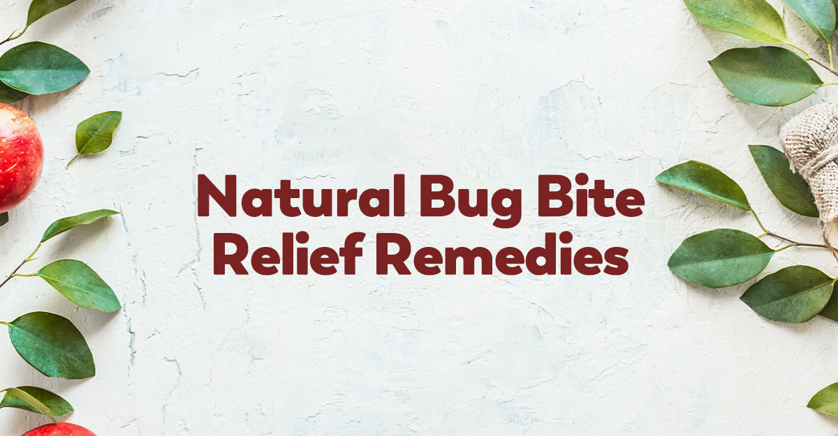 natural bug bite relief